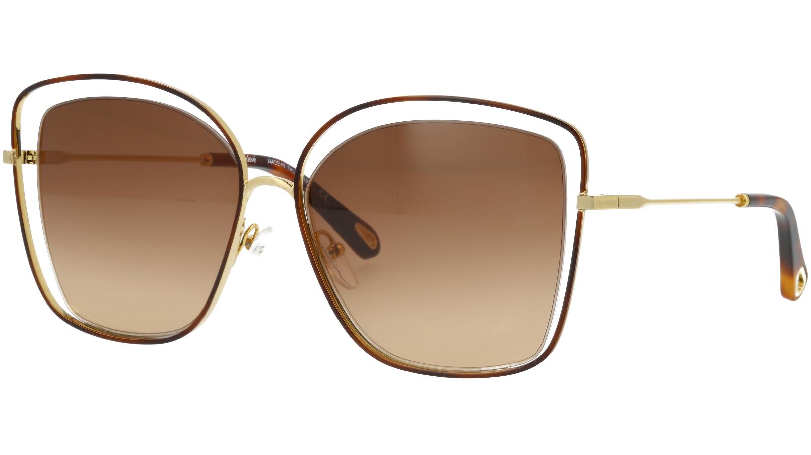 CHLOE CE133S 205 60 Havana Brown Poppy Cat-Eye Sunglasses