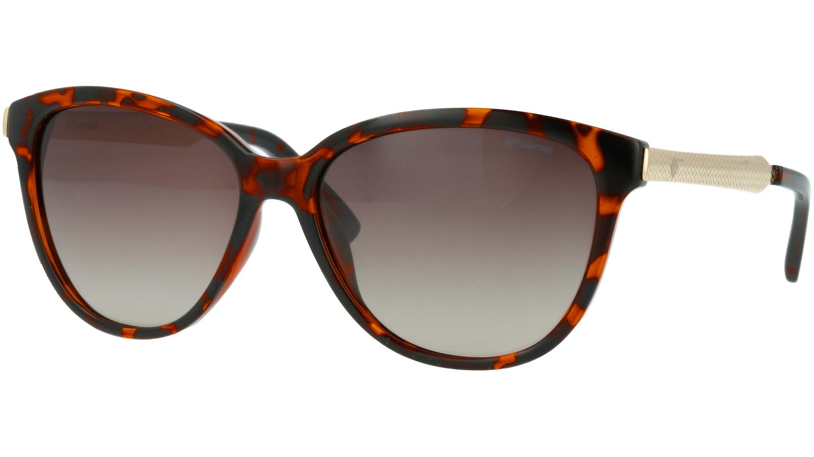 Polaroid PLD5016/S LLY94 58 Havana Sunglasses