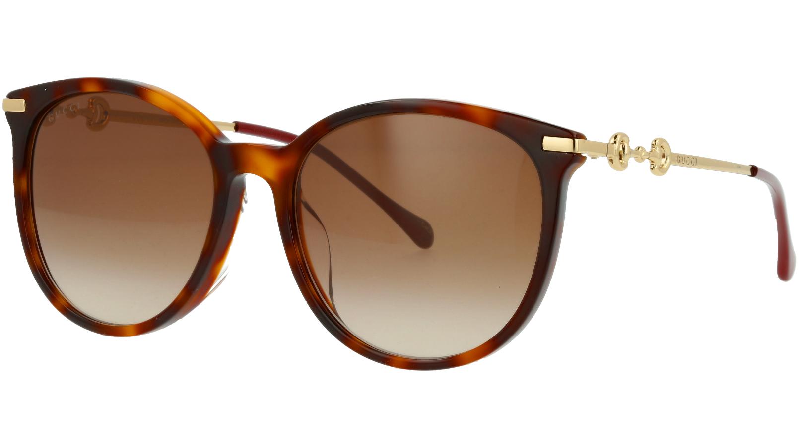 Gucci GG0885SA 002 56 Havana Cat-Eye Sunglasses