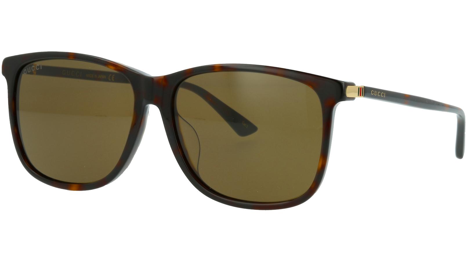 Gucci GG0017SA 002 58 AVANA Sunglasses