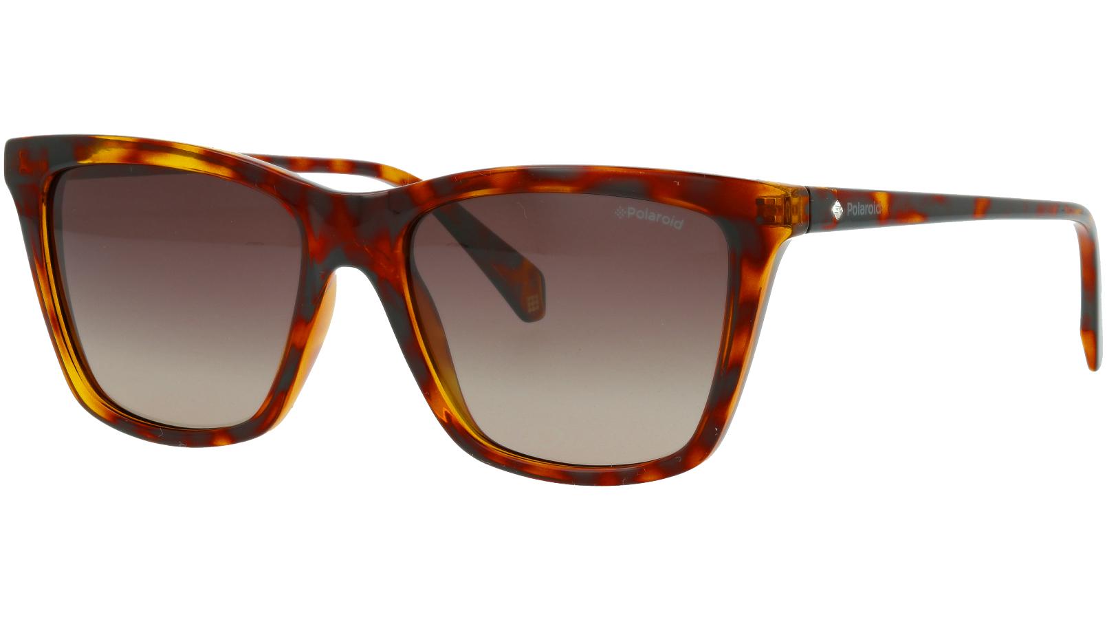 Polaroid PLD4081/S 807WJ 53 BLACK Sunglasses